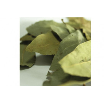 LAUREL LEAF PET 80 GRS